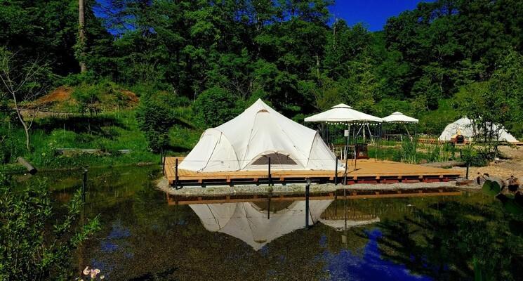 白馬森のわさび農園オートキャンプ場の画像mc10185