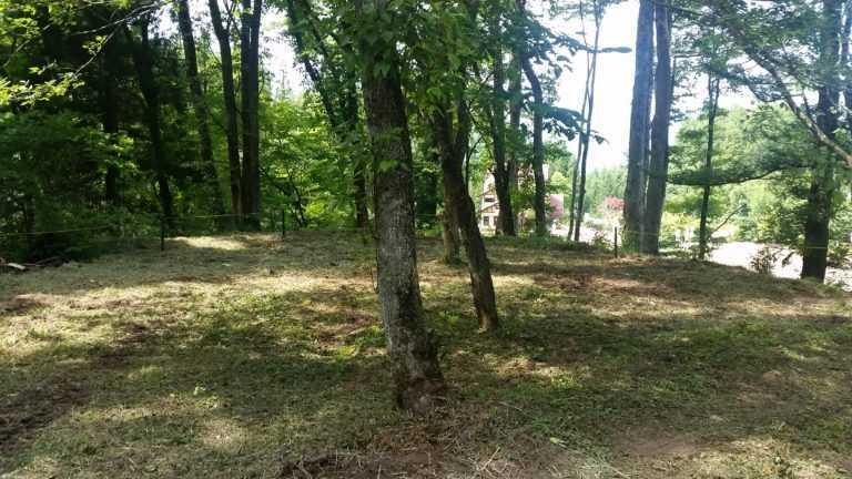 白馬森のわさび農園オートキャンプ場 の公式写真c8457