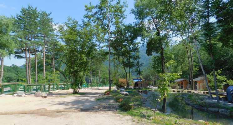 天然温泉源泉かけ流し 心笑キャンプ場の画像mc9421