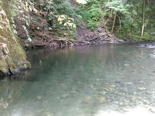 北秋川自然休暇村の画像mc9685
