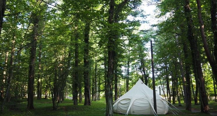 Lake Lodge YAMANAKAの画像mc10641