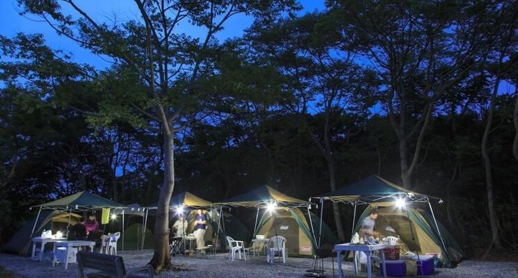 やんばるBBQキャンプ場の画像mc18396