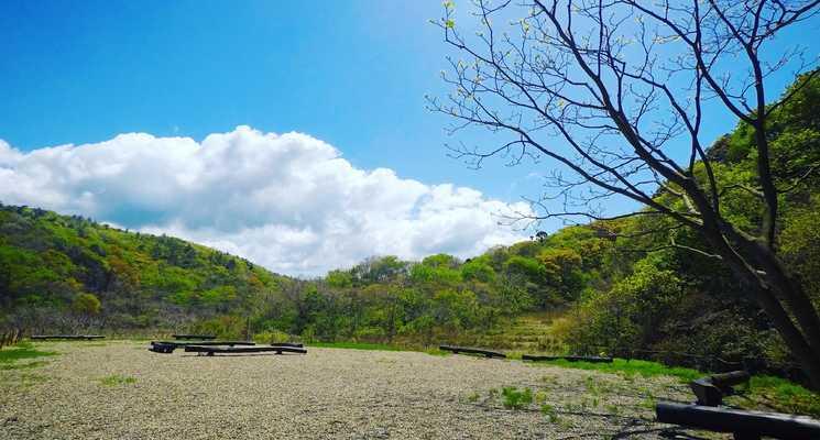 ネイチャーランド椎谷の画像mc11490