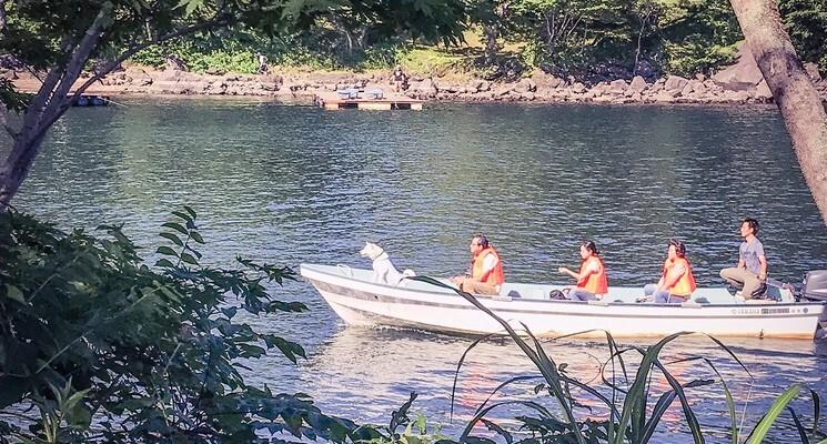 LakeHibara大石キャンプ場の画像mc13570