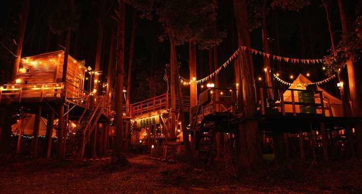 Camping GREEN(キャンピンググリーン)の画像mc14245