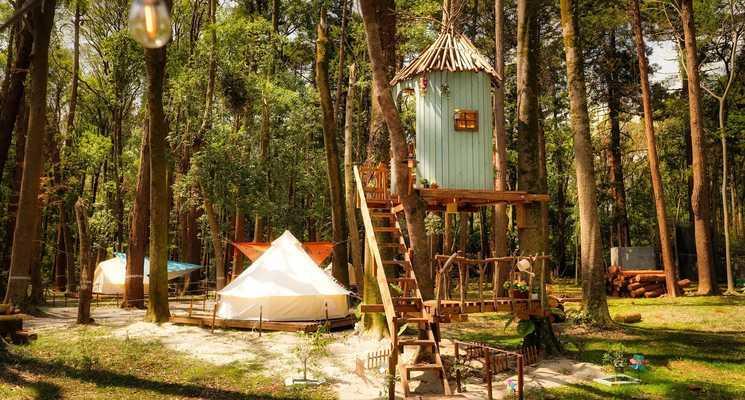 Camping GREEN(キャンピンググリーン)の画像mc14246