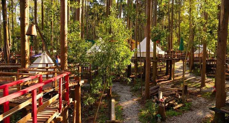 Camping GREEN(キャンピンググリーン)の画像mc14247