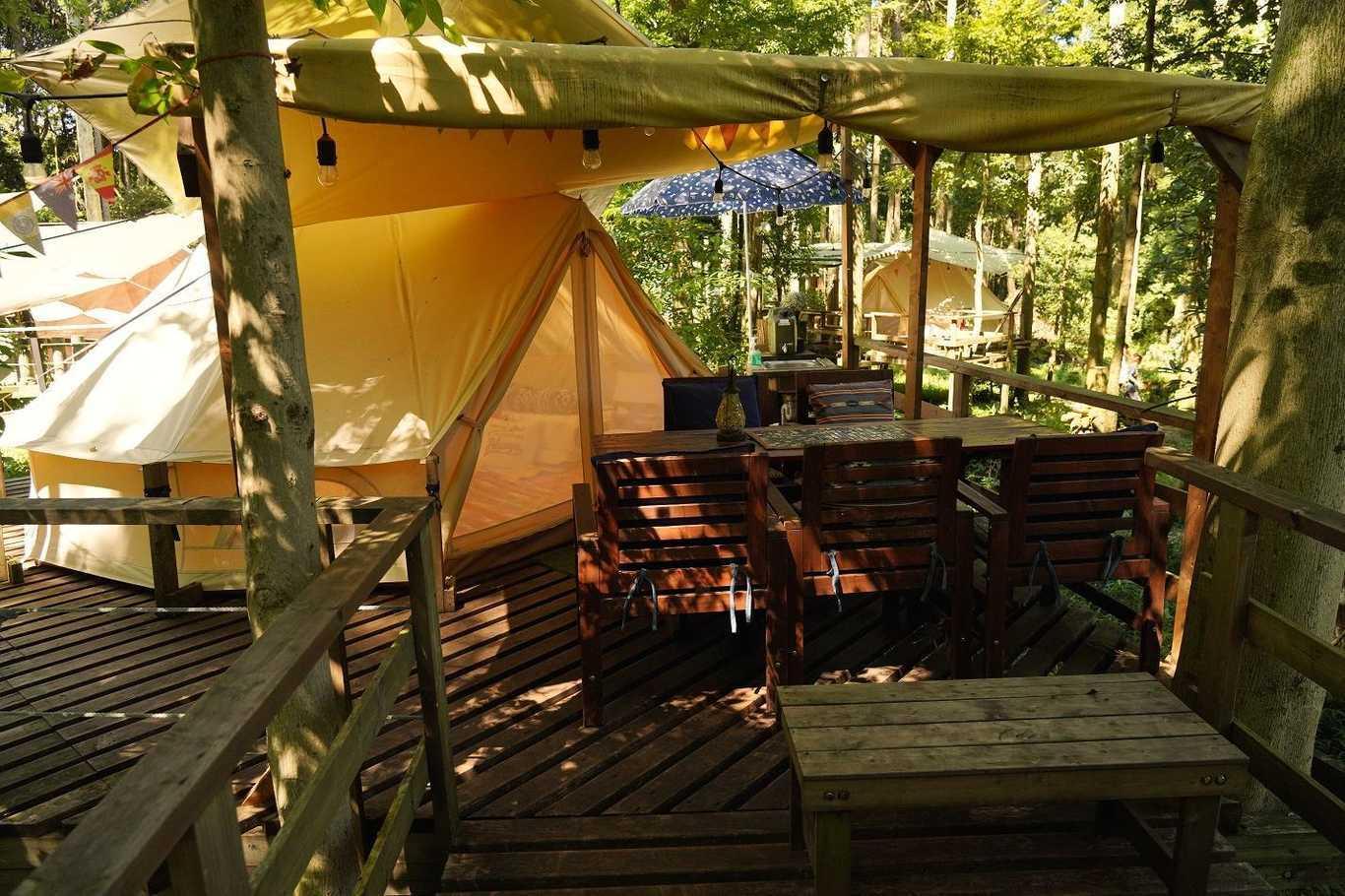 Camping GREEN(キャンピンググリーン) の公式写真c14251