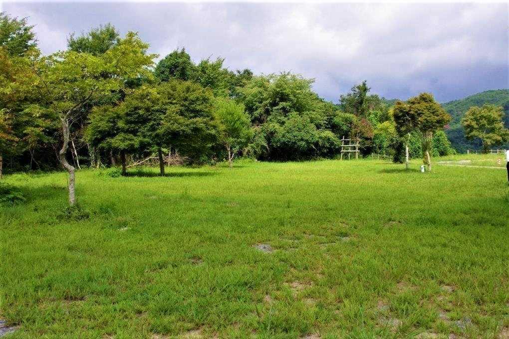 北房もみじ公園 の公式写真c16275