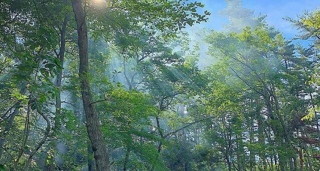 The Camp & Garden AMANAYUの画像mc16293