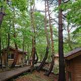 石川県 医王の里オートキャンプ場の投稿画像 25070