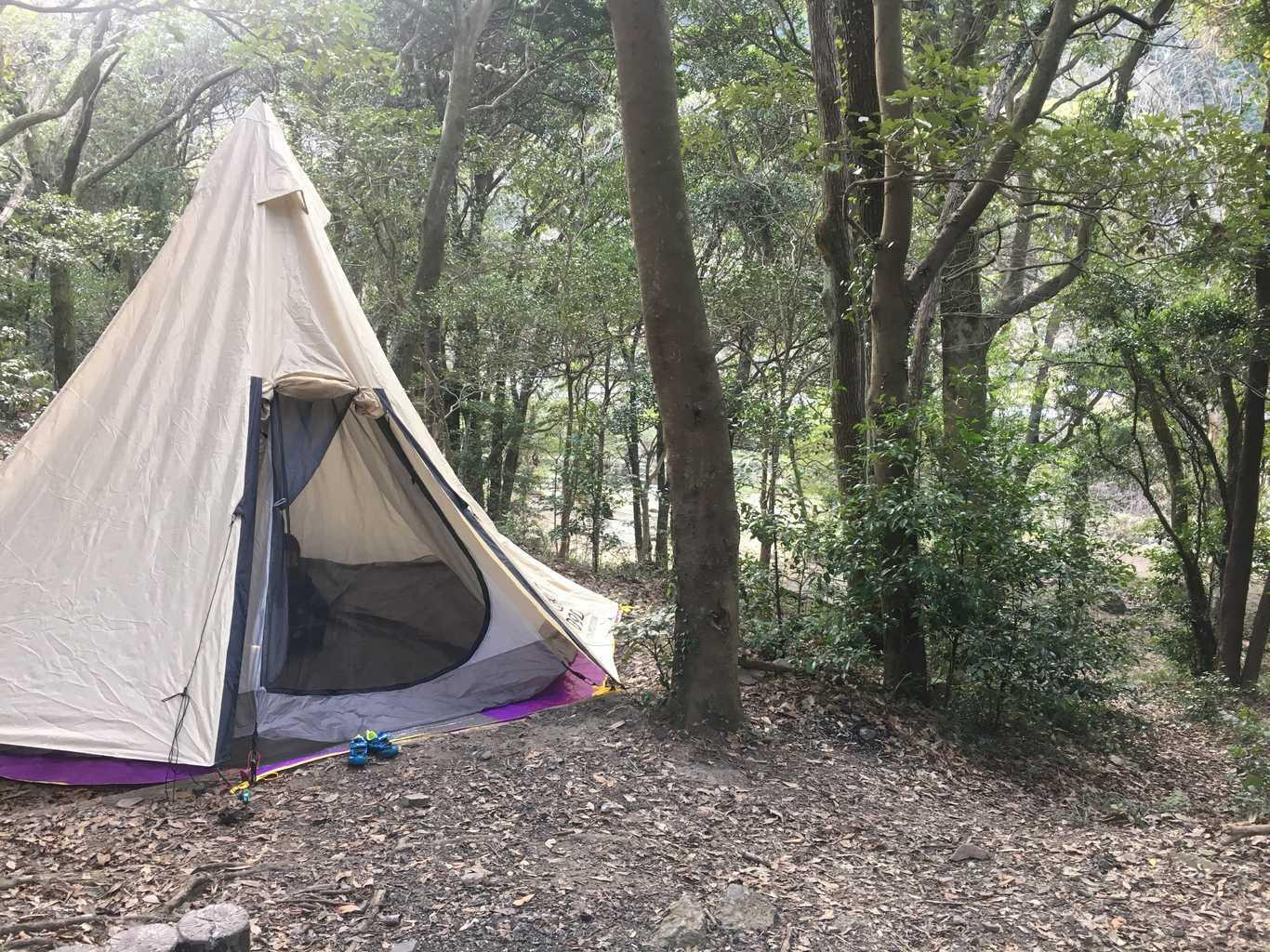 深坂自然の森キャンプ場 の写真p