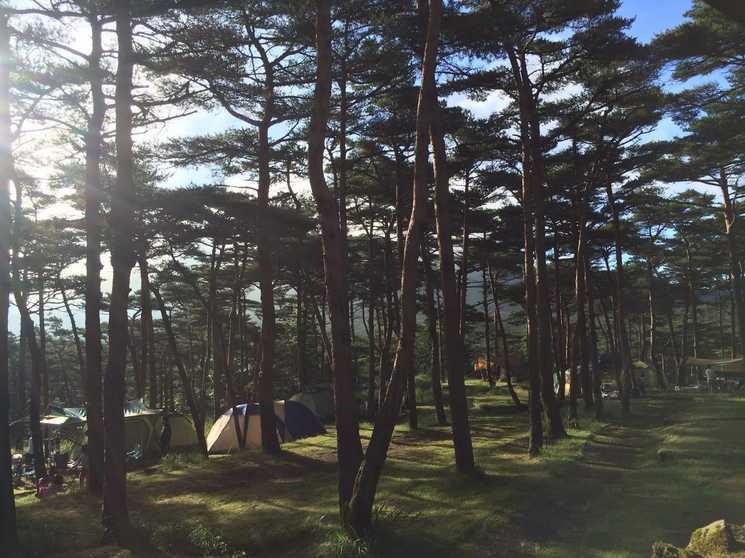 キャンプ 村 高原 えびの