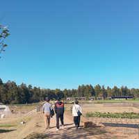 農場と青空