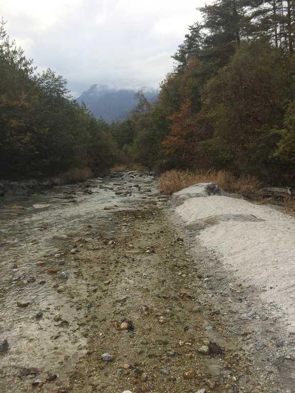 白州・尾白の森名水公園べるが 尾白の森キャンプ場  の写真p