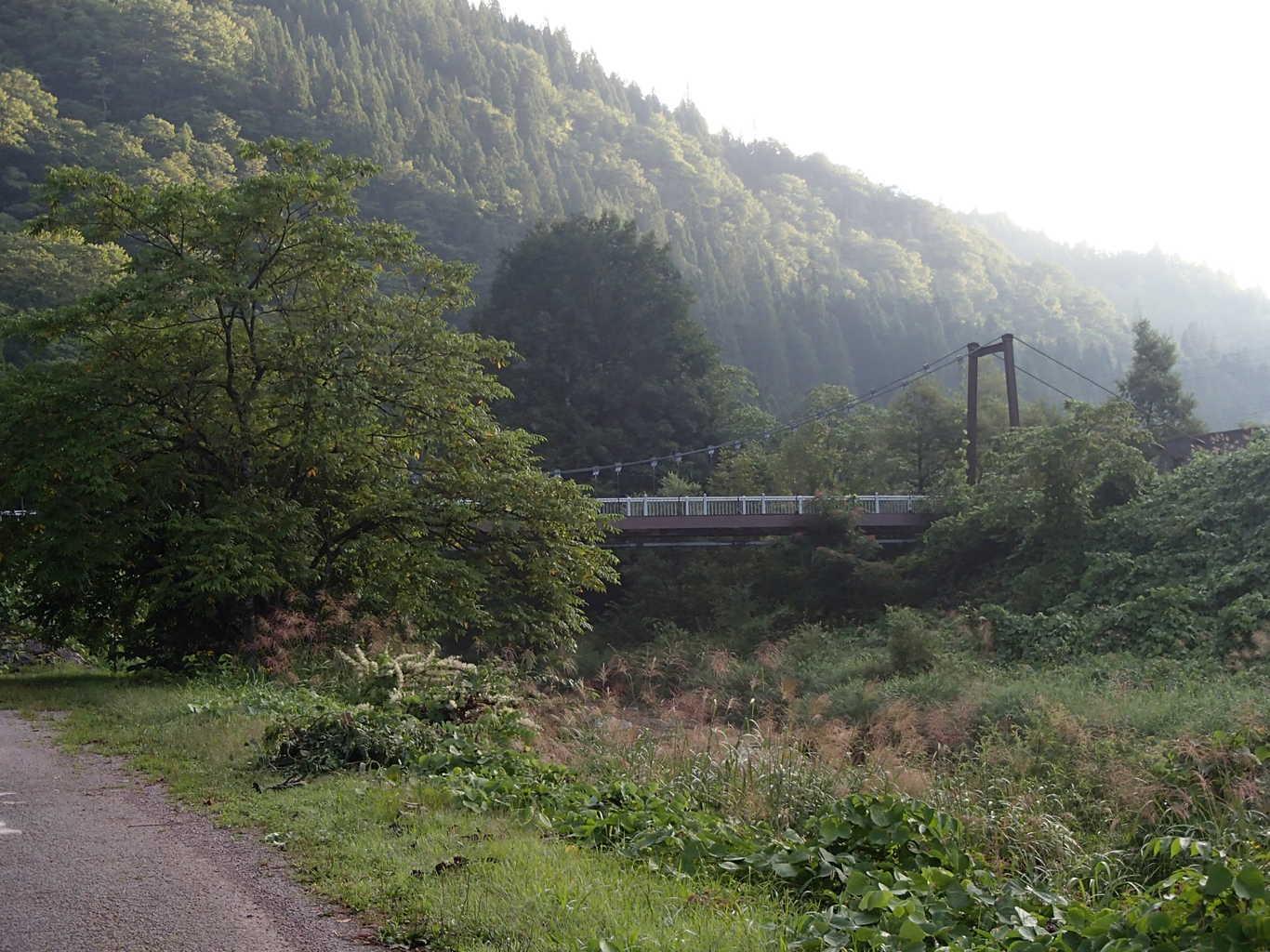なかんじょ川キャンプ場 の写真p