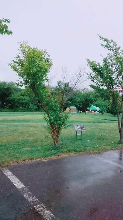 栗山さくらキャンプ場 の写真p