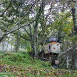 大分県 バルンバルンの森(洞門キャンプ場)の投稿画像 22863
