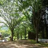 兵庫県 丹波悠遊の森の投稿画像 25762