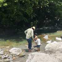 水が最高に綺麗の尾白川渓谷