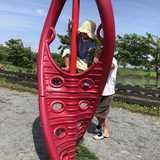 神奈川県 長井海の手公園 ソレイユの丘の投稿画像 26133