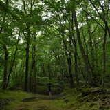 山梨県 CAMP AKAIKE(キャンプ アカイケ)の投稿画像 26443