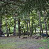 山梨県 CAMP AKAIKE(キャンプ アカイケ)の投稿画像 26447