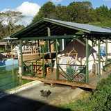 栃木県 昭和ふるさと村の投稿画像 30214