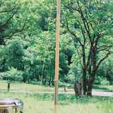 福井県 和泉前坂家族旅行村 前坂キャンプ場の投稿画像 25985
