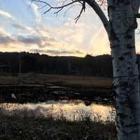 湿地帯夕景