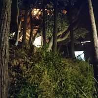 斜面を登っている途中から撮影、下からテント2基、一番上にツリーハウス。結構傾斜が強いです。
