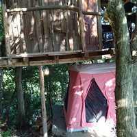 ツリーハウスと二番目のテントの位置関係はこんな感じです。