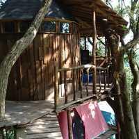 ツリーハウスへのアプローチ、一段、二段と下ったところにそれぞれテントがあります。