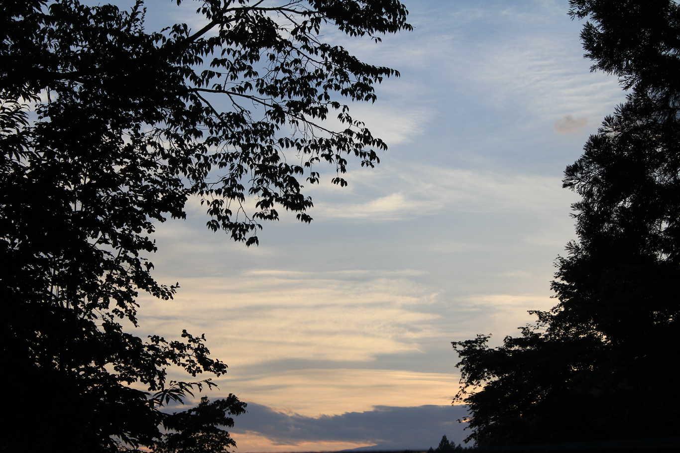 日光まなかの森 キャンプ&リゾート の写真p