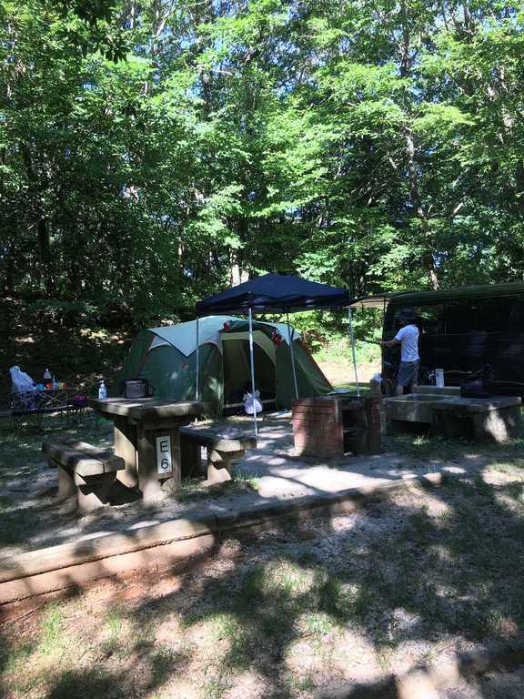 もみのき森林公園オートキャンプ場 の写真p
