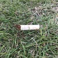 ポイ捨てのタバコ