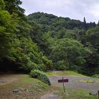左側がキャンプ場最奥のサイト。右は車を回す場所