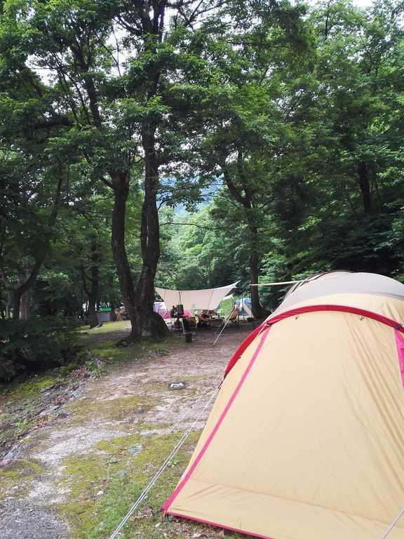大源太キャニオンキャンプ場 の写真p