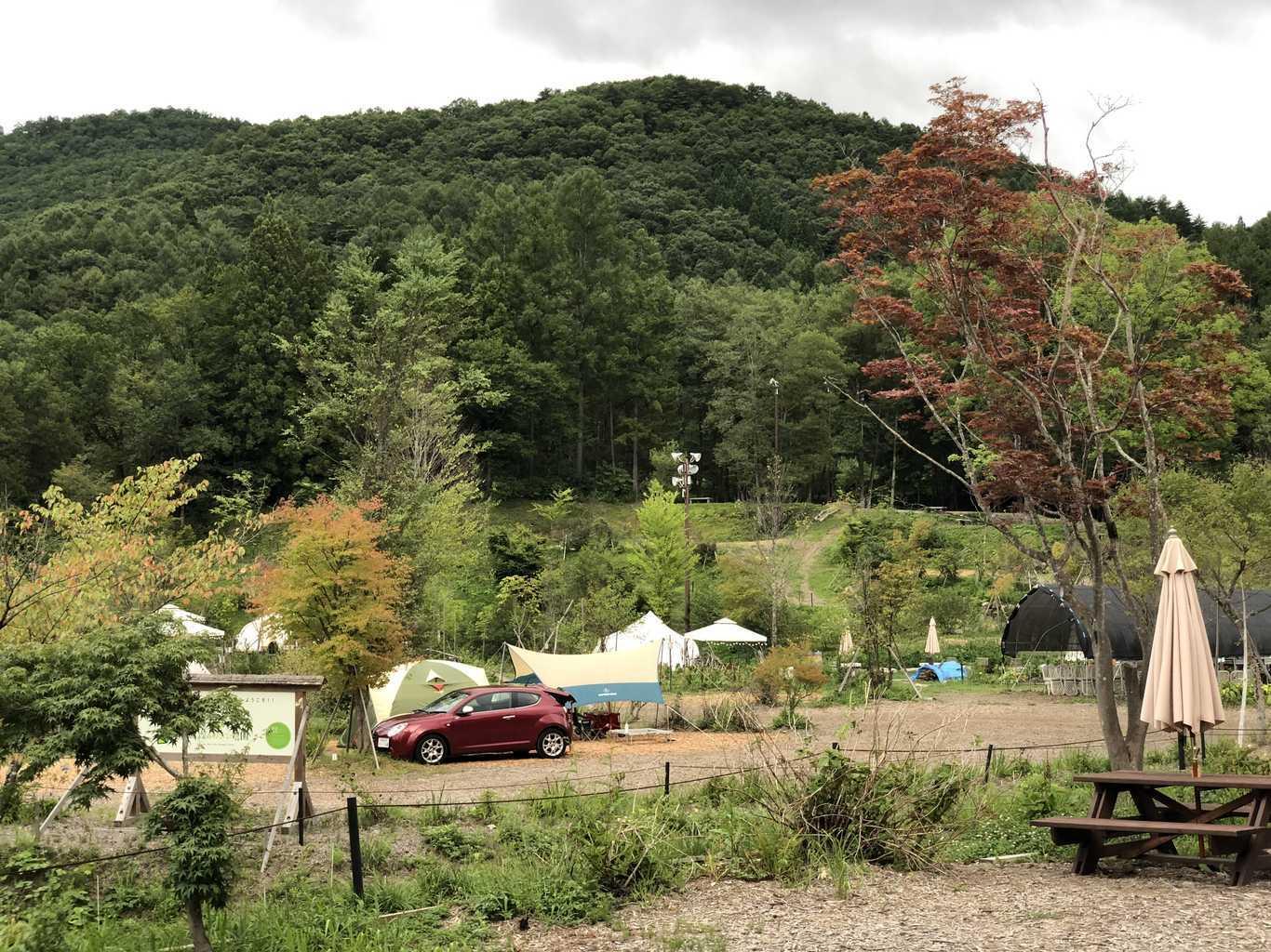 白馬森のわさび農園オートキャンプ場 の写真p