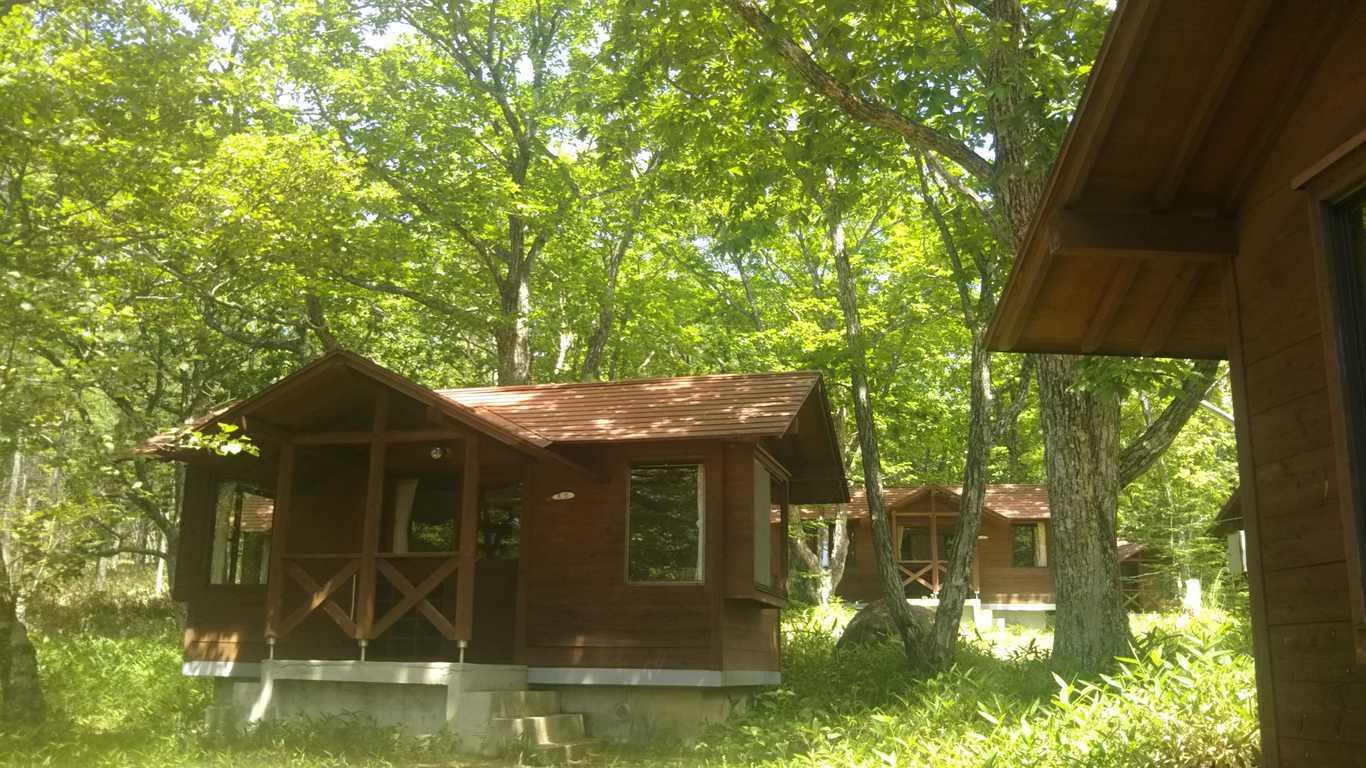 八ヶ岳美し森ロッジ(旧名称:美し森ファーム) の写真p