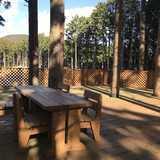 静岡県 細野高原ツリーハウス村キャンプ場の投稿画像 31982