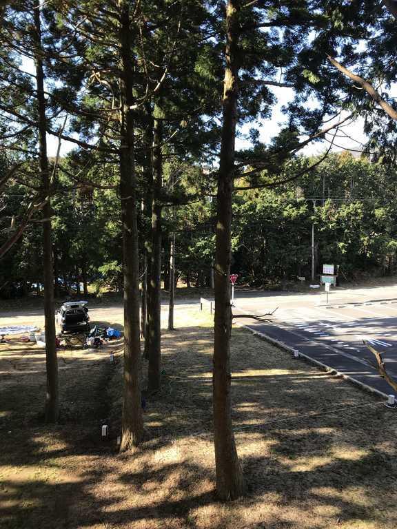 細野高原ツリーハウス村キャンプ場 の写真p
