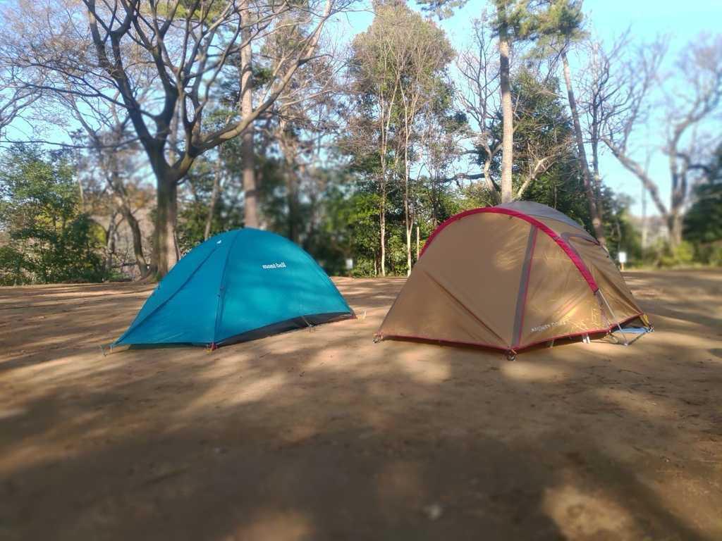 清水公園 キャンプ場 の写真p
