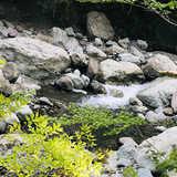 山梨県 福士川渓谷青少年旅行村奥山キャンプ場の投稿画像 33828