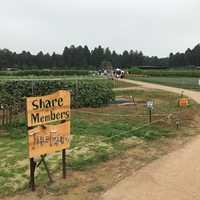 収穫体験農園入り口