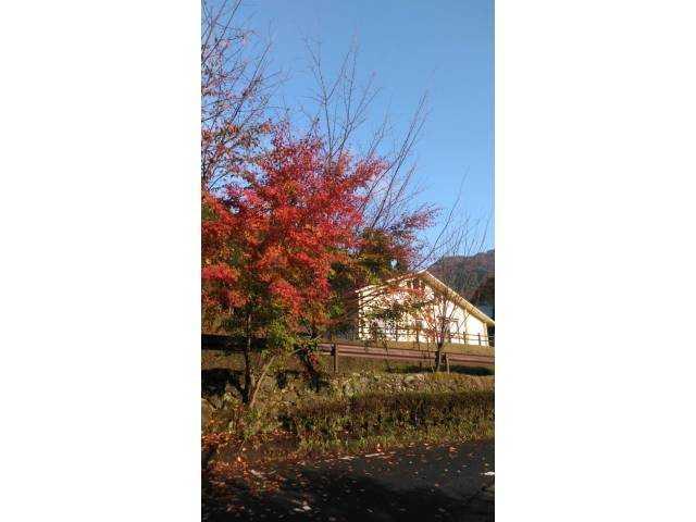 熊本県 古代の里キャンプ村 の新着関連写真t103(1)