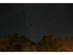 山梨県 みずがき山森の農園キャンプ場 の新着関連写真t725(2)