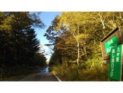 山梨県 八ヶ岳美し森ロッジ(旧名称:美し森ファーム) の新着関連写真t498(1)