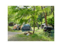 山梨県 ほうれん坊の森キャンプ場 のイベント関連写真e96(1)