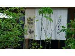 山梨県 ほうれん坊の森キャンプ場 の新着関連写真t28(1)